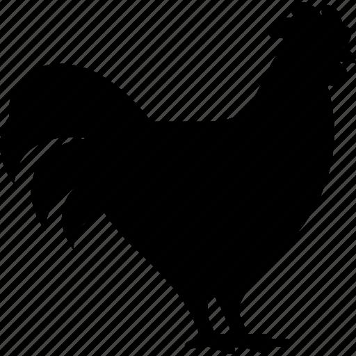 animal, bird, chicken, farm, farmer's market, hen, poultry icon
