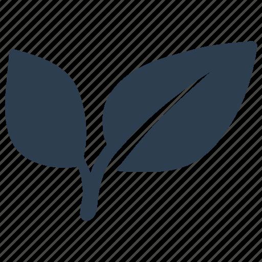 Bio, eco, leaf, nature, organic icon - Download on Iconfinder