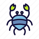 beach, crab, holiday, picnic, summer, tour, vacation icon