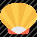 shell, camping, travel, vacation, resort, beach