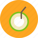 coconut, fruit, journey, tourist, travel, vacation icon