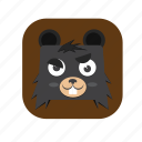 .svg, bear, cute icon