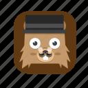 bear, cute icon