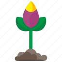 bud, earth, flower, grow, plant icon
