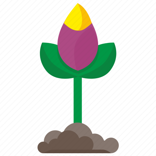 bud, earth, flower, grow, plant icon