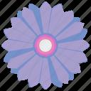 bud, camomile, flower, plant icon