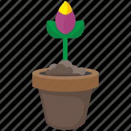 bud, flower, leaf, plant, pot, rose icon