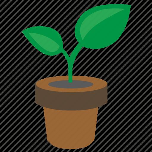 grow, leaf, plant, pot icon