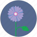 bud, flower, nature, plant, round icon