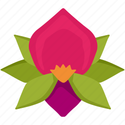 bud, flower, nature, orchid, plant icon