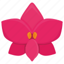 bud, flower, nature, orchid, orchide, plant icon
