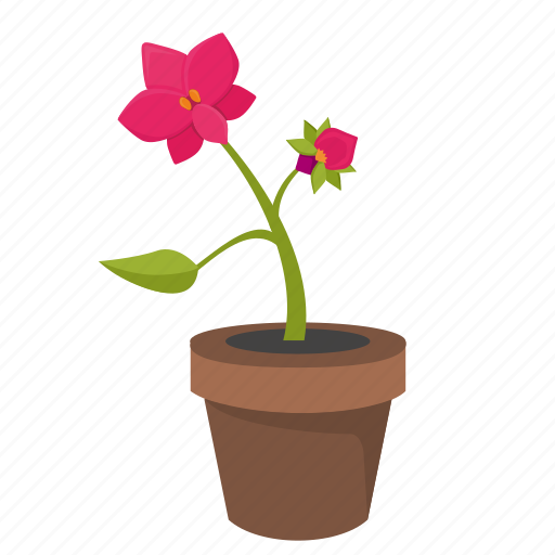 bud, flower, orchid, plant, pot icon