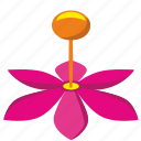 bud, flower, open, plant icon