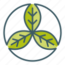 circle, leaf, natural, organic, trinity icon