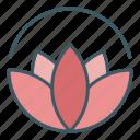 bloom, blossom, circle, flower, harmony, lotus, yoga