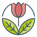 beauty, circle, flower, garden, spring, tulip icon