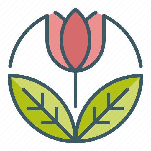 beauty, circle, flower, garden, spring, tulip icon