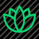 lotus, plant, salon, service, spa