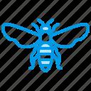 apiary, bee, beekeeping, honeybee icon