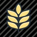 barley, beer, brewing, malt, seed icon