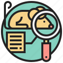 animal, experimental, laboratory, research, test icon