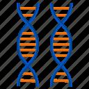 heredity, biology, dna, genetics, lab, laboratory, science