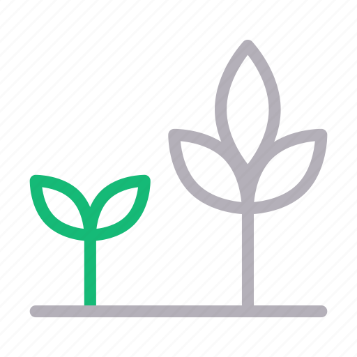 green, growth, leafs, nature, plant icon