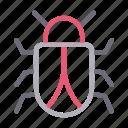 bug, insect, ladybird, malware, virus