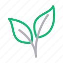 biology, green, leaf, leaves, nature icon