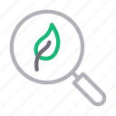 experiment, lab, leaf, science, search icon