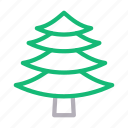 fir, green, nature, park, tree icon