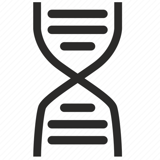 biology, chain, dna, look, science icon
