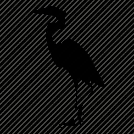 animal, bird, heron icon