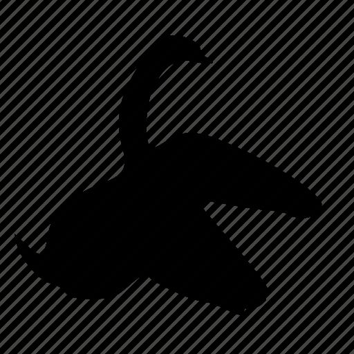 animal, bird, swan icon