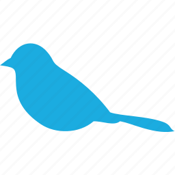 animal, bird, wildlife, wing icon