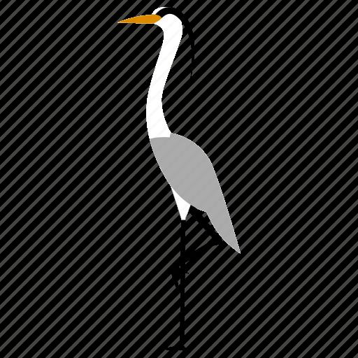 bird, egret, heron, stork icon