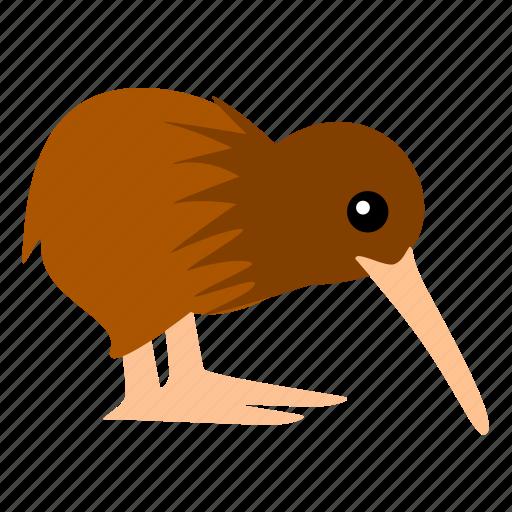 bird, kiwi, new zealand icon
