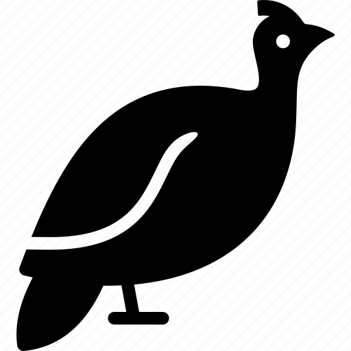 guinea fowl, helmeted icon