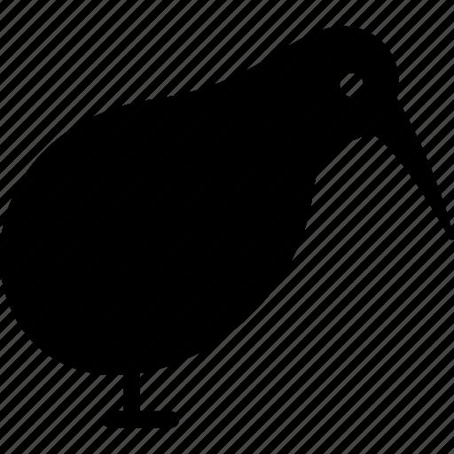 Bird, brown, kiwi, okarito, spotted icon - Download on Iconfinder
