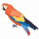 bird, colombia bird, colorful parrot, parrot, scarlet macaw icon