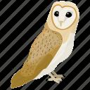 animal, barn owl, bird, owl, prey bird icon