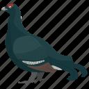 aquatic bird, bird, cormorant, phalacrocoracidae, seabird icon