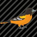 bird, golden weaver, passerine bird, ploceidae, weaver-bird icon