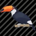 bird, cartoon toucan, ramphastidae, toco toucan, toucan icon