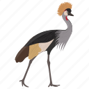 balearica regulorum, bird, crowned crane, grey crane, large bird icon