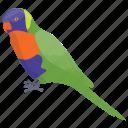colorful parrot, crimson-bellied conure, crimson-bellied parakeet, parrot, pyrrhura perlata icon