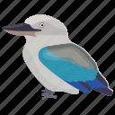 alcedinidae, animal, australian bird, bird, forest kingfisher icon