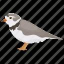 bird, mimidae, mississippi symbol, mockingbird, passerine bird icon
