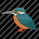 alcedinidae, animal, australian bird, bird, kingfisher icon