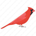 bird, common cardinal, northern cardinal, red cardinal, redbird icon